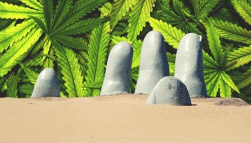 uruguay marihuana turismo