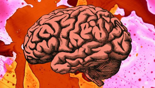 microdosis lsd cerebro