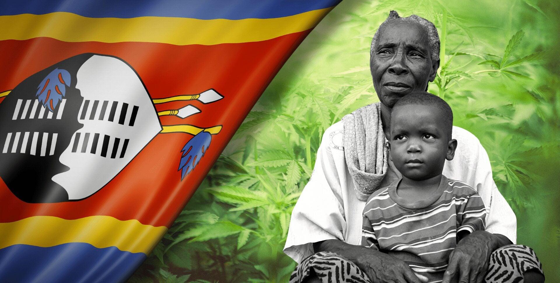africa marihuana abuelas Suazilandia