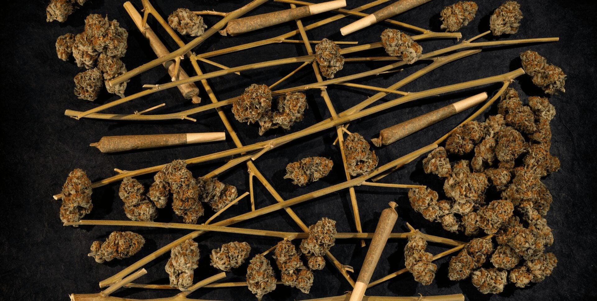 fumar tallo marihuana