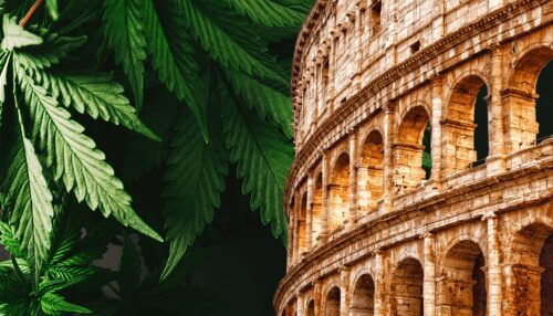 italia marihuana