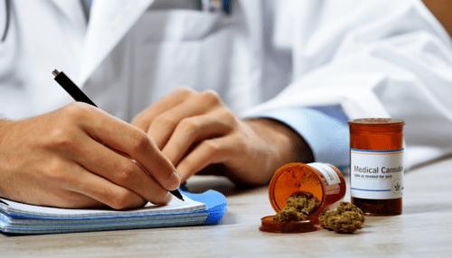 médicos cannabis educación