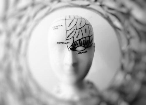cannabis cerebro